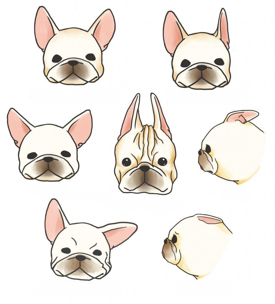 Pasos de la otitis en perros bulldog